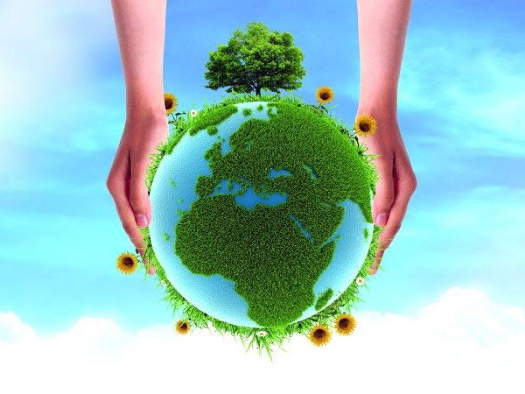 ΠΜΣ: Διαχείριση Περιβάλλοντος και Περιβαλλοντική Εκπαίδευση – MySep.Gr